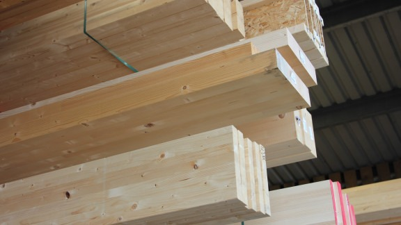 Procuring Sustainable Timber Image